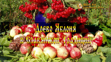 Древо Яблоня в Славянской Традиции