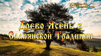 Древо Ясень в Славянской Традиции