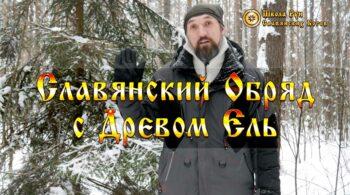 Славянский Обряд с Древом Ель