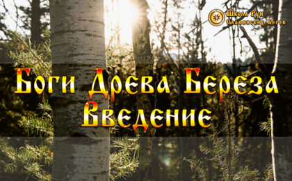 Боги Древа Береза Введение